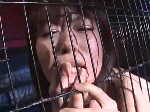 ดอกทองญี่ปุ่นบ้าต้น Ai ในแปลก เครื่องราง BDSM JAV ฉาก