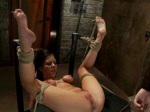 ผูกไว้บนหลังของเธอ จุกผูกกับเท้าของเธอใหญ่ นิ้วถึงจุดสุดยอด สั่นสะเทือน เลสเบี้ยนทำร้าย!, ยินดีต้อนรับกลับ Tessa เทย์เลอร์ไป Hogtied ธรรมชาติ เต็มหน้าอก C นี้น่ารัก 20 ปีเก่าได้ สาวประตูถัดไปนี้เหนียว ยืดหยุ่น และไม่กลัวที่จะปล่อยให้ตัวเองไป และเชื่อถือได